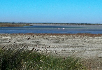 Salin de Giraud - Camargue seaside resort