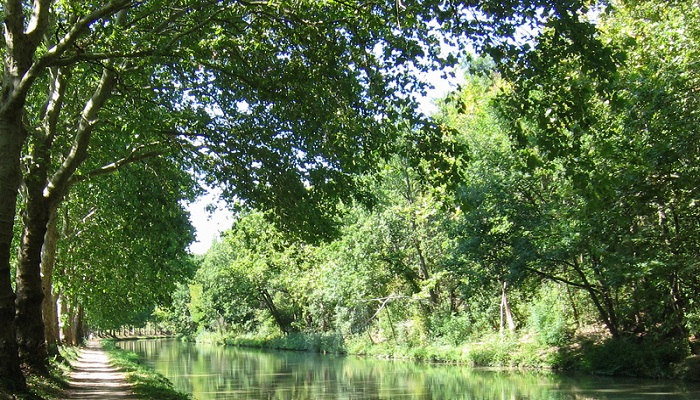 Walks along the Canal du Midi in France